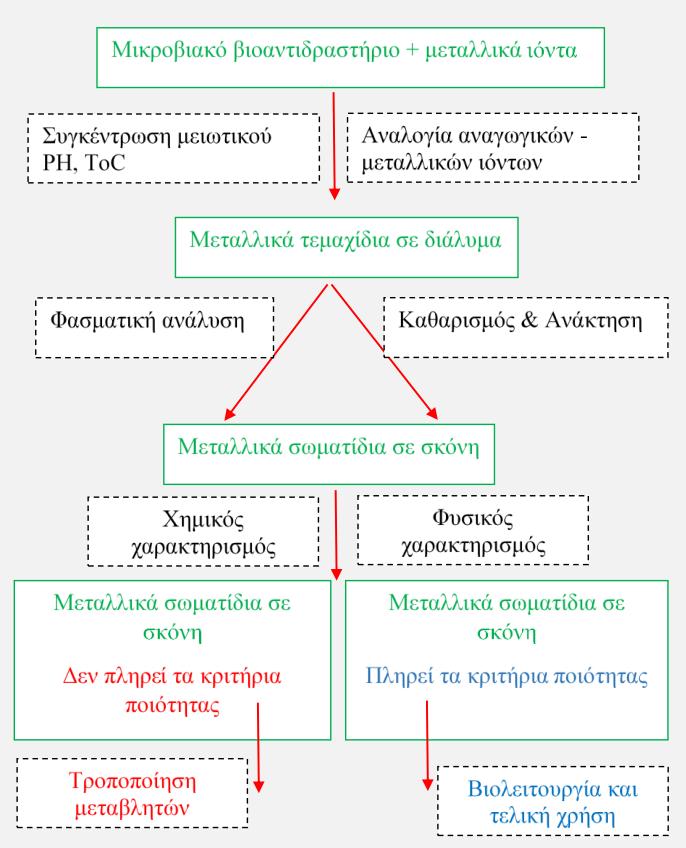 Εικ.2. Κύριο διάγραμμα ροής για τη μικροβιολογική σύνθεση των μεταλλικών νανοσωματιδίων