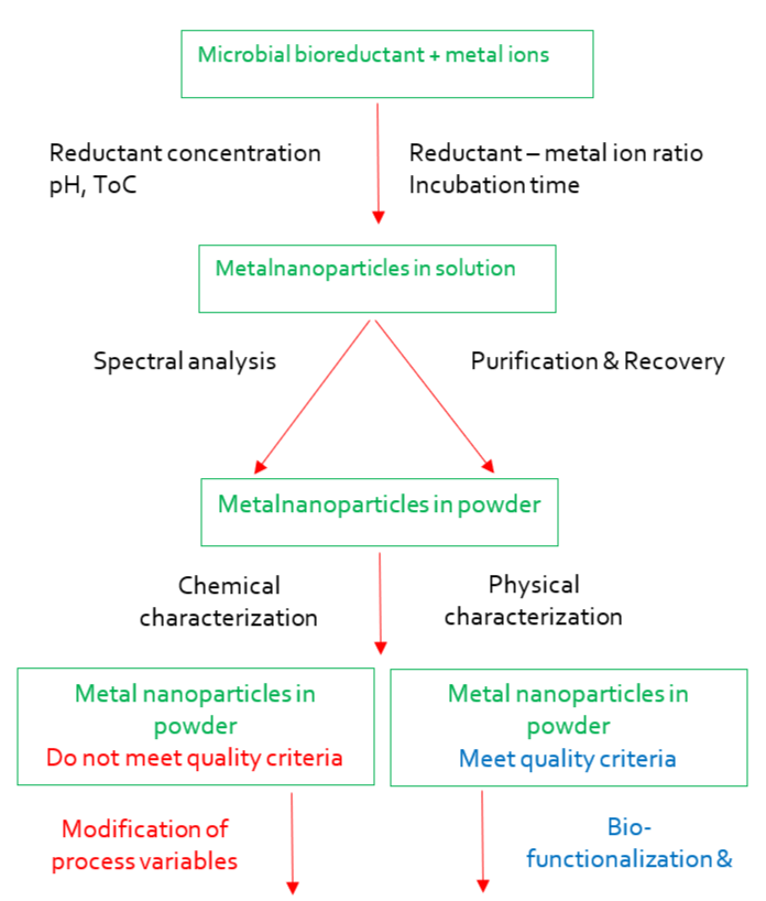 Fig.2 Principal flow chart for microbiological synthesis of metallic